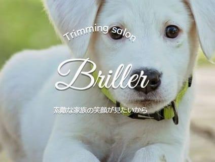 Briller(ブリエ)の画像