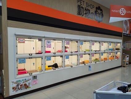 【Coo&RIKU(クーアンドリク) 高知御座店】ショップ店員さん(アルバイト・パート)募集中♪[高知県高知市]画像