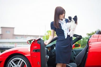 TOP PET@Premium本店の店長候補募集(正社員)画像