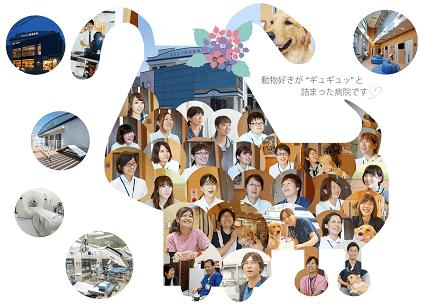 【すえつぐ動物病院】看護師募集/正社員/大分県別府市画像