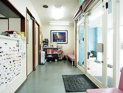 <むかい猫と犬の病院>動物看護師の募集[正社員][千葉県成田市]No.104_d_a0b7F000000Ob9AQAS画像