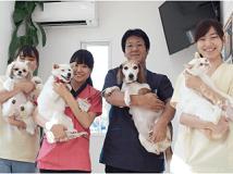 ●守山しっぽ動物病院●動物看護師募集中●正社員/滋賀県守山市●の画像