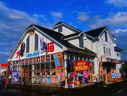 【海動物病院 鳥取往診所】獣医師(アルバイト・パート)募集中♪[鳥取県鳥取市]画像