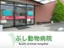 ぶし動物病院の画像1