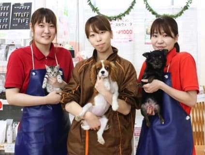 ペットアミ新津店の画像