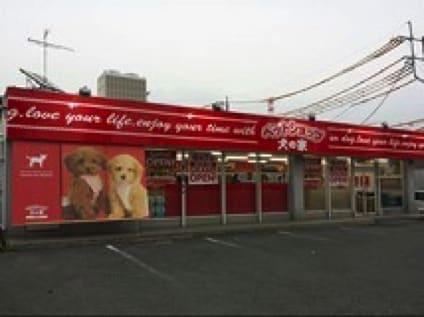 ペットショップ 犬の家 相模原店の画像