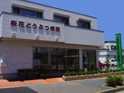桜花どうぶつ病院の画像