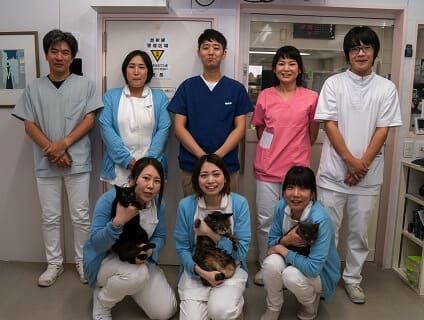 【武蔵村山市三ツ藤】◇◆ヒマラヤン動物病院で獣医師(アルバイト・パート)の募集!◆◇画像