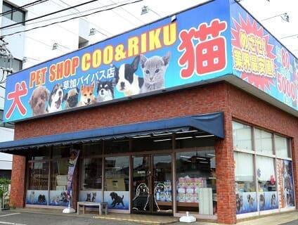 【Coo&RIKU(クーアンドリク) 草加バイパス店】ショップ店員さん(正社員)募集中♪[埼玉県草加市]画像