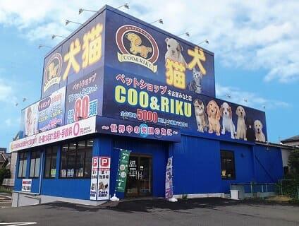 【Coo&RIKU(クーアンドリク) 名古屋みなと店】トリマーさん(正社員)募集中♪[愛知県名古屋市港区]画像