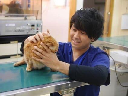 アニファ動物病院 五香病院の画像