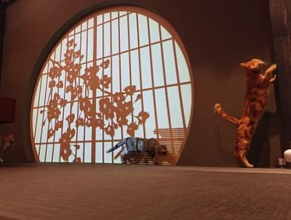 【海動物病院 秋葉原往診所】獣医師(アルバイト・パート)募集中♪[東京都千代田区]画像