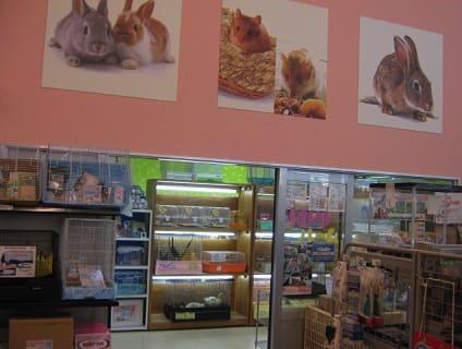 ペットアミ館山店の画像