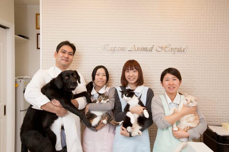《●かがみ動物病院●》動物看護師さんを募集中《正社員/佐賀県唐津市》画像