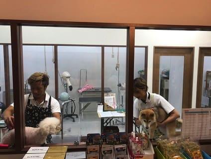 [animal life千葉本店]トリマーの募集![パート/千葉市若葉区]No.110_b画像