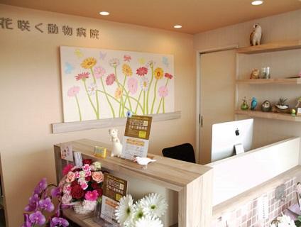 花咲く動物病院の画像
