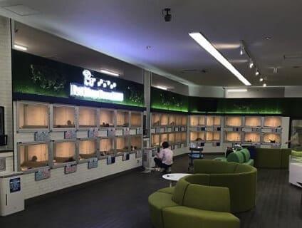 【Coo&RIKU(クーアンドリク) 東海一宮店】ショップ店員さん(アルバイト・パート)募集中♪[愛知県一宮市]画像