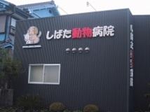 しばた動物病院の画像1