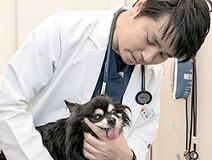 アテナ動物病院 福井の画像1