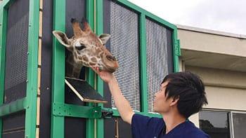 日本ペット診療所[新卒]の画像1