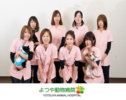 よつや動物病院の画像