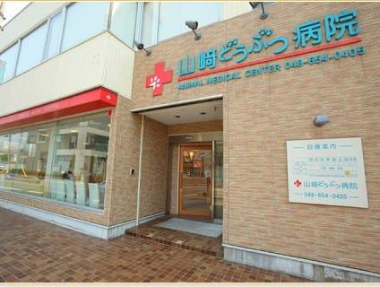 山崎どうぶつ病院の画像