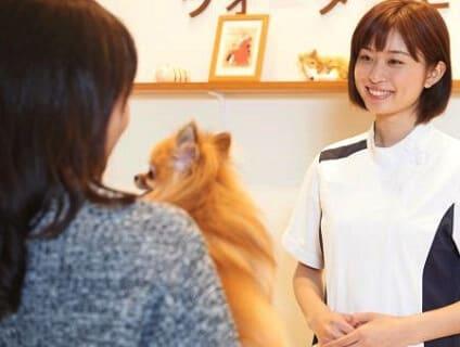 【イオンペット(動物病院)】動物看護師さん募集中!!【アルバイト・パート】【東京都エリア】画像