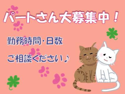 [いぬねこcafe Lua]トリマー(パート)大募集中!![東京都町田市]No.314_d画像