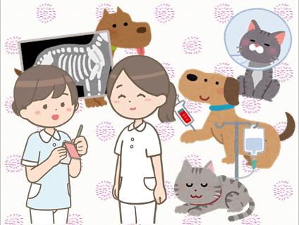 滝沢犬猫鳥の病院の画像