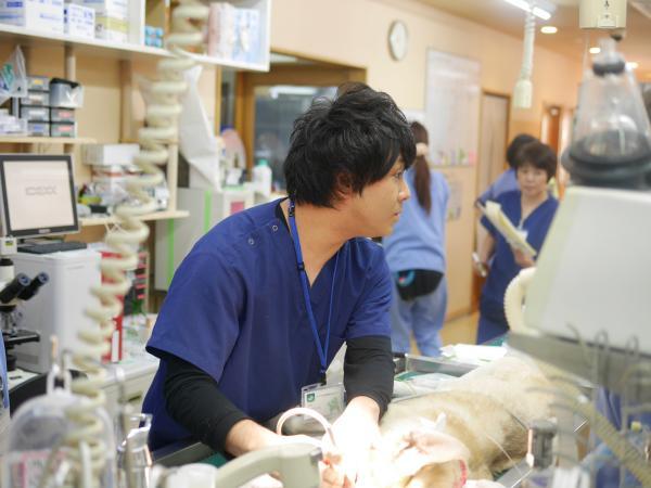 アニファ動物病院 尾山台病院の画像1