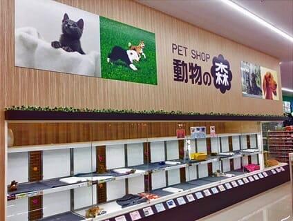 【Coo&RIKU(クーアンドリク) のいち店】ショップ店員さん(アルバイト・パート)募集中♪[高知県香南市]画像