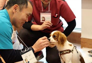 きたのさと動物病院/札幌どうぶつ皮膚科・耳科センターの画像