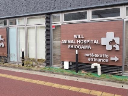 ウィル動物病院 塩釜病院の画像