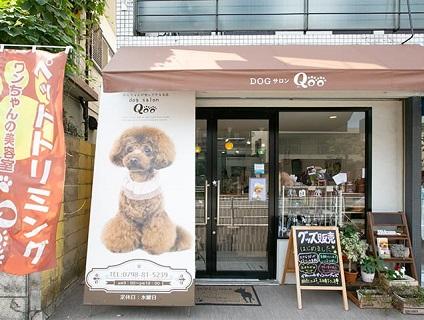 dog salon Qooの画像1