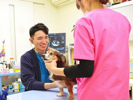 〔北千束動物病院〕動物看護師さんを募集しています!〔正社員〕〔東京都大田区〕の画像
