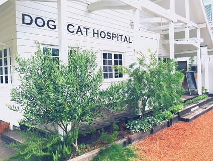 雷頭動物診療室の画像