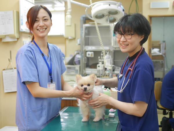 アニファ動物病院 尾山台病院の画像