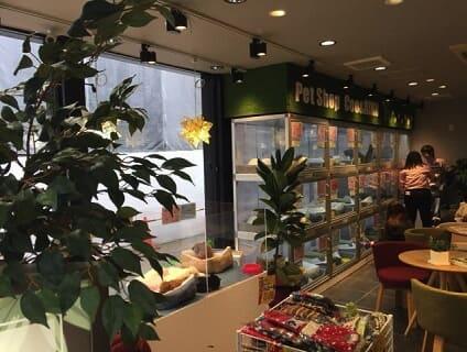 【Coo&RIKU(クーアンドリク) 赤坂店】ショップ店員さん(アルバイト・パート)募集中♪[東京都港区]画像