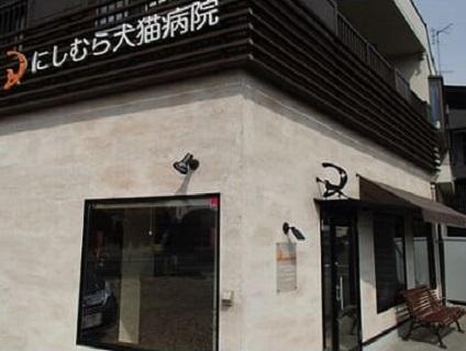 <にしむら犬猫病院>動物看護師の募集♪[パート・アルバイト/東京都東村山市]画像