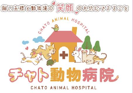 チャト動物病院の画像1