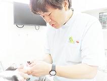 ■きたじま動物病院■ 獣医師の募集[アルバイト・パート]/埼玉県草加市画像