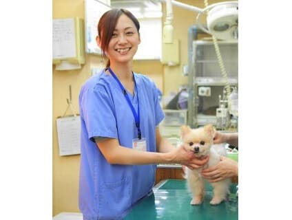 アニファ動物病院 松戸病院の画像