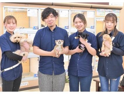 ディスワン 松戸ときわ平店の画像1