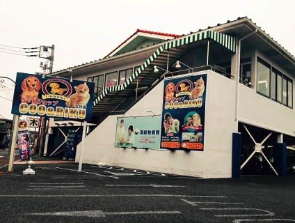 【Coo&RIKU(クーアンドリク) 立川店】ショップ店員さん(アルバイト・パート)募集中♪[東京都立川市]画像