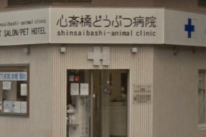 心斎橋どうぶつ病院の画像