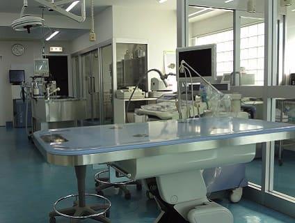 [南子安動物病院]動物看護師の募集![パート・アルバイト/千葉県君津市]No.110_bの画像