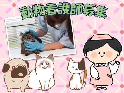 非公開求人:動物看護師募集【正社員】【愛知県あま市】No.8660_2画像