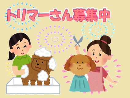 [Dog Space]トリマー(正社員)大募集中!![神奈川県横浜市]No.314_d画像