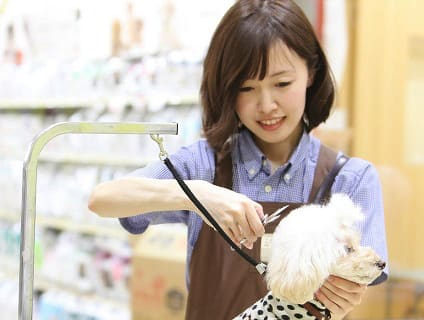 イオンペット PeTeMoピアシティ稲毛海岸店の画像