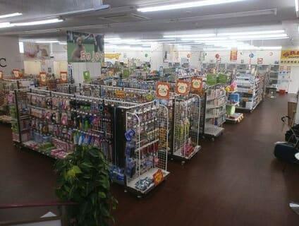 【Coo&RIKU(クーアンドリク) 日立店】トリマーさん(正社員)募集中♪[茨城県日立市]画像